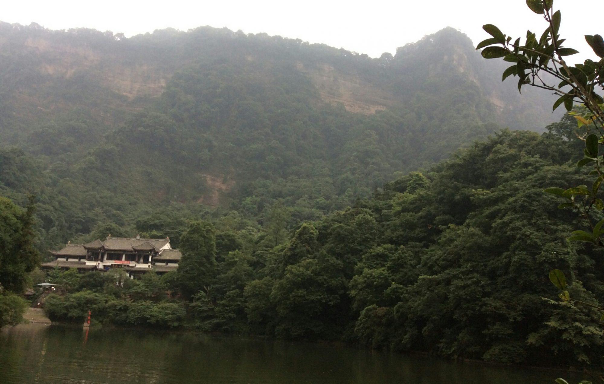 Yangjia Michuan Taijiquan avec Duyü